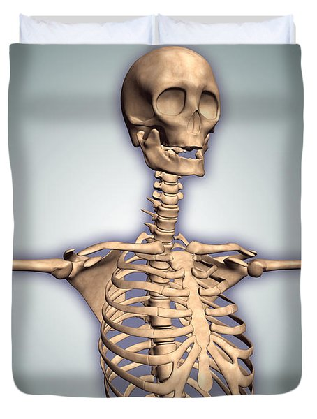 Conceptual Image Of Human Rib Cage Duvet Cover by Stocktrek Images