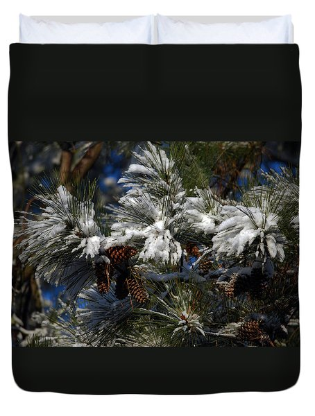 Cones Duvet Cover by Skip Willits
