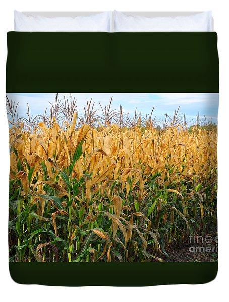 Corn Harvest Duvet Cover by Terri Gostola