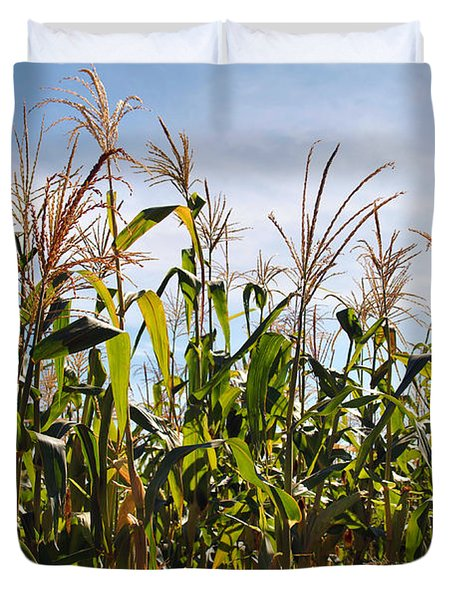 Corn Production Duvet Cover by Carlos Caetano