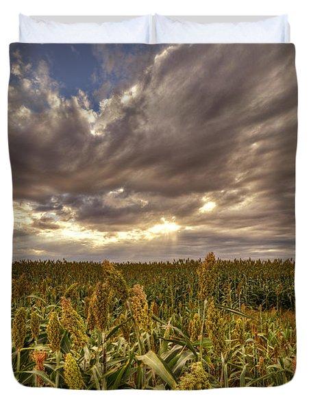 Cornfield Sunset  Duvet Cover by Saija  Lehtonen