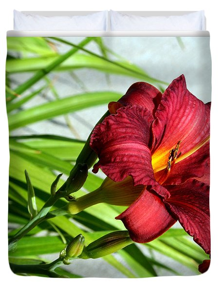 Cranberry Colored Lily Duvet Cover by Kay Novy