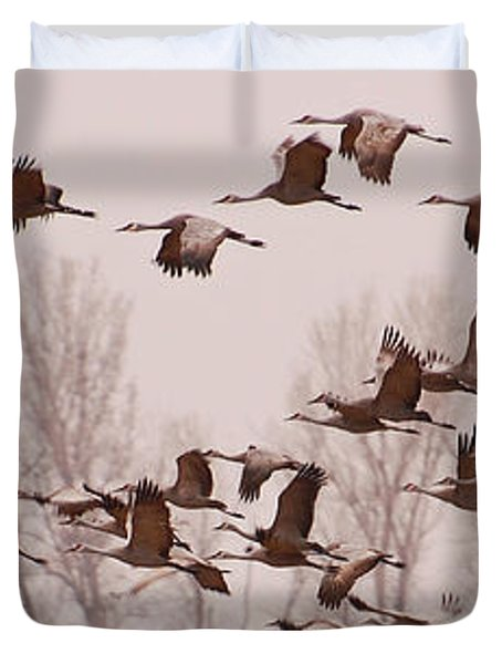 Cranes Across The Sky Duvet Cover by Don Schwartz