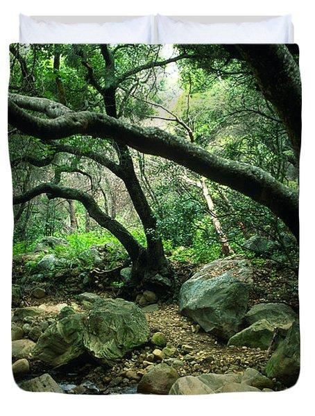 Creek in Woods Duvet Cover by Kathy Yates