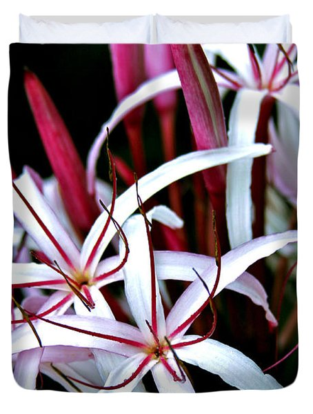 Crinum Asiaticum Spider Lily Hawaii Duvet Cover by Karon Melillo DeVega