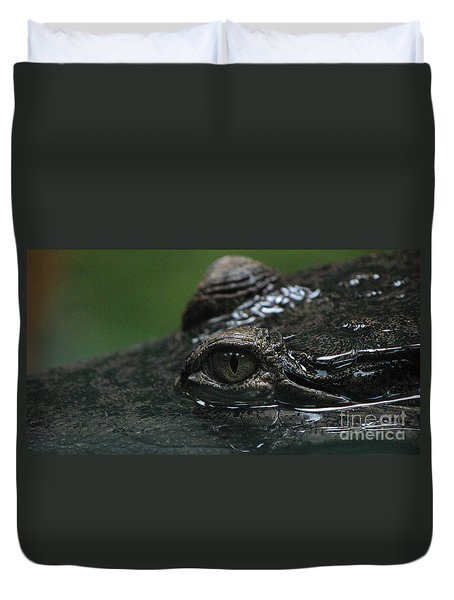 Croc's Eye-1 Duvet Cover by Gary Gingrich Galleries