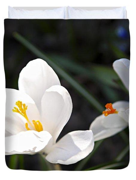Crocus Flower Basking In Sunlight Duvet Cover by Elena Elisseeva