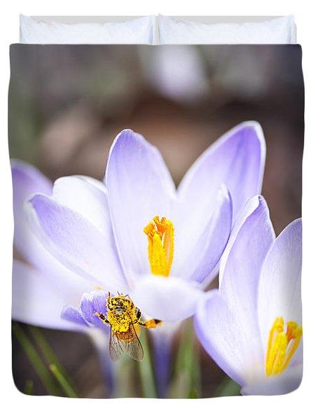 Crocus Flowers And Bee Duvet Cover by Elena Elisseeva