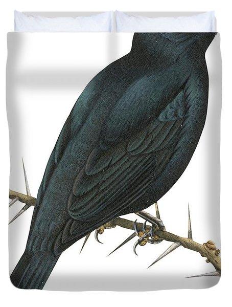 Cuckoo Shrike Duvet Cover by Anonymous