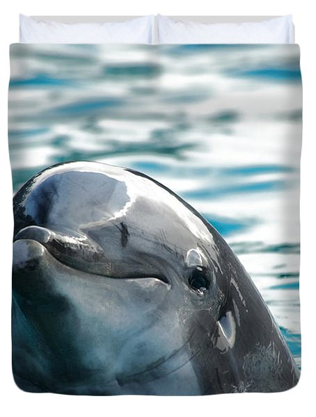 Curious Dolphin Duvet Cover by Mariola Bitner
