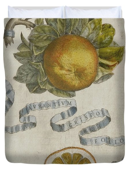 Curled Leaf Orange Duvet Cover by Cornelis Bloemaert