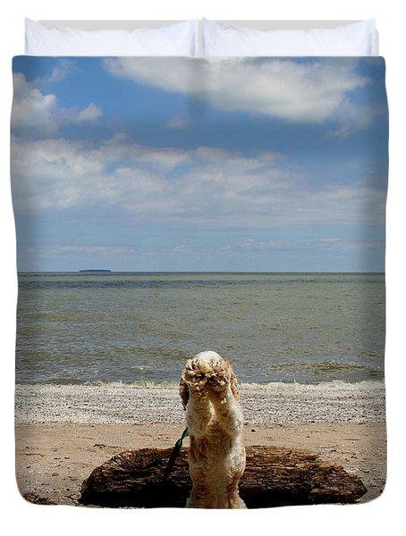 Cute Cocker Spaniel Duvet Cover by Dan Sproul