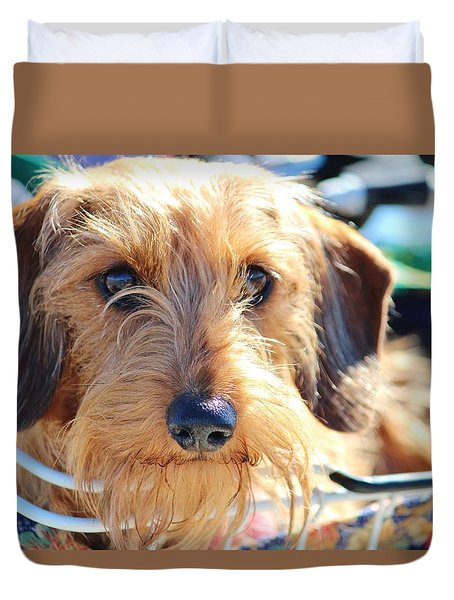 Cute Puppy Duvet Cover by Cynthia Guinn