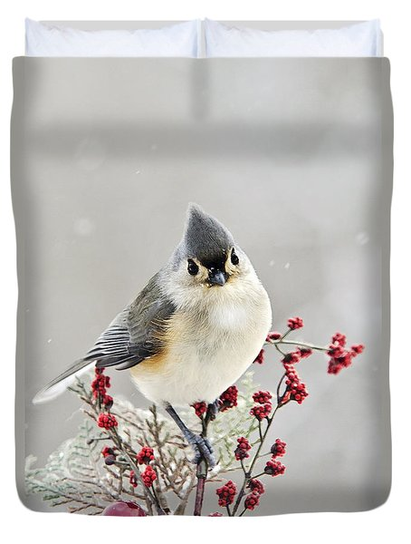 Cute Winter Bird - Tufted Titmouse Duvet Cover by Christina Rollo