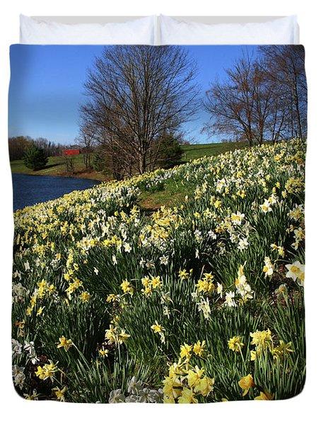 Daffodil Hill Duvet Cover by Karol Livote