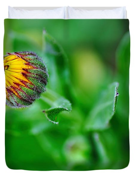 Daisy Bud ready to bloom Duvet Cover by Kaye Menner