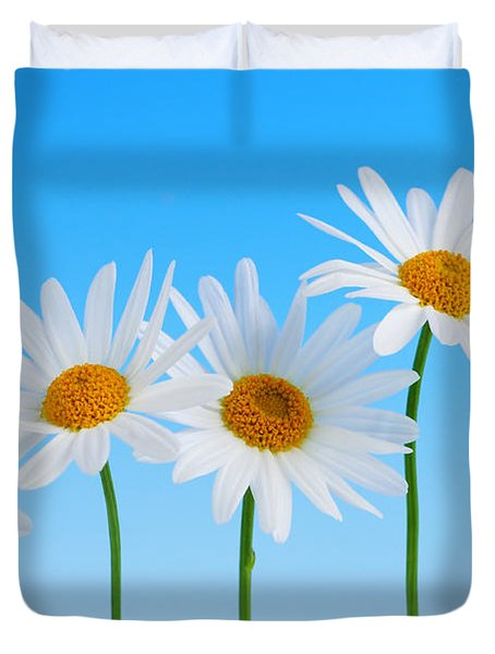 Daisy flowers on blue background Duvet Cover by Elena Elisseeva