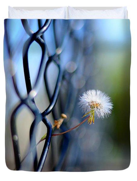 dandelion wish Duvet Cover by Laura  Fasulo