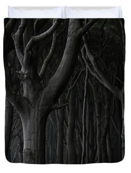 Dark Forest Duvet Cover by Heiko Koehrer-Wagner
