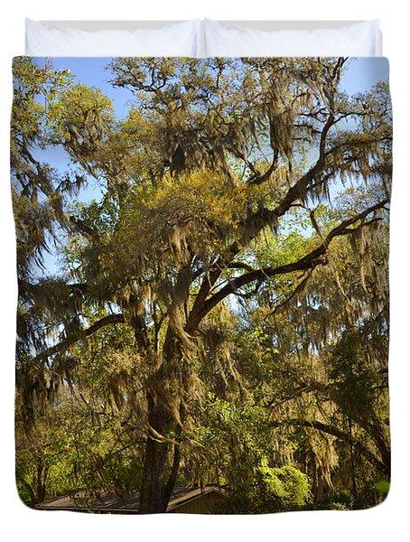 De Leon Springs - Classic Old Florida Duvet Cover by Christine Till