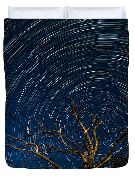 Dead Oak With Star Trails Duvet Cover by Paul Freidlund