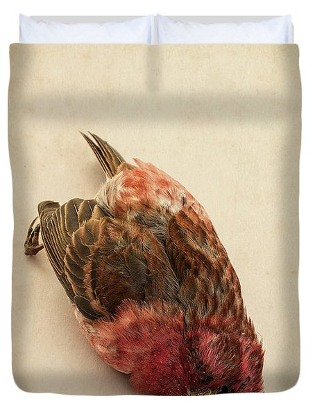 Death Of The Innocent Duvet Cover by Edward Fielding