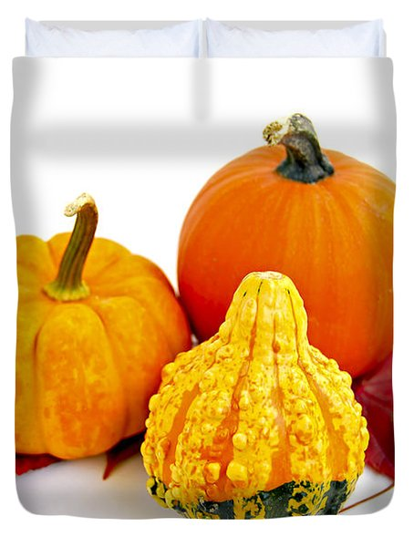 Decorative Pumpkins Duvet Cover by Elena Elisseeva
