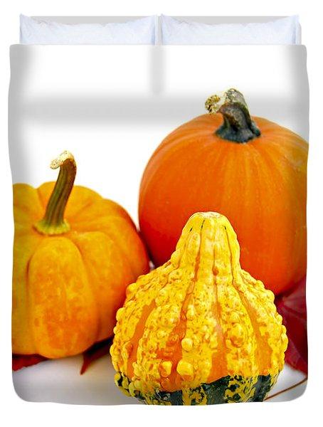 Decorative pumpkins Duvet Cover by Elena Elisseeva