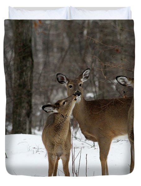 Deer Affection Duvet Cover by Karol Livote