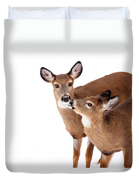 Deer Kisses Duvet Cover by Karol Livote
