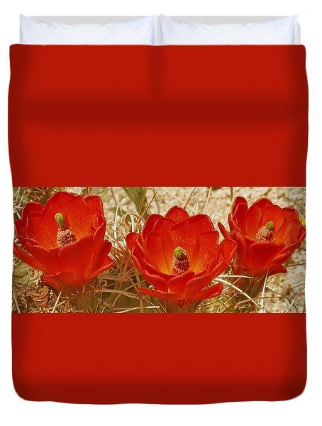 Desert Blooms Duvet Cover by Ben and Raisa Gertsberg