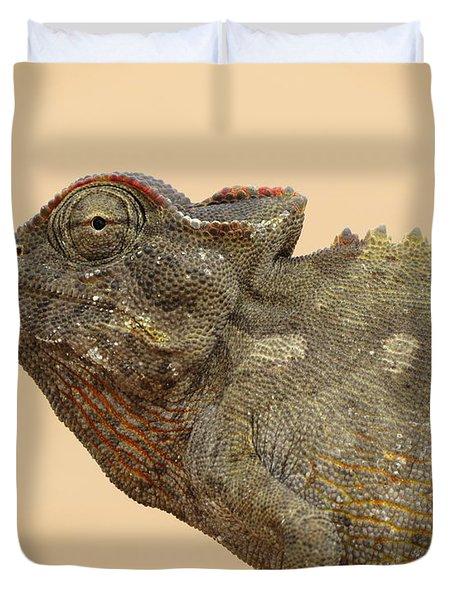 Desert Chameleon Duvet Cover by Ramona Johnston