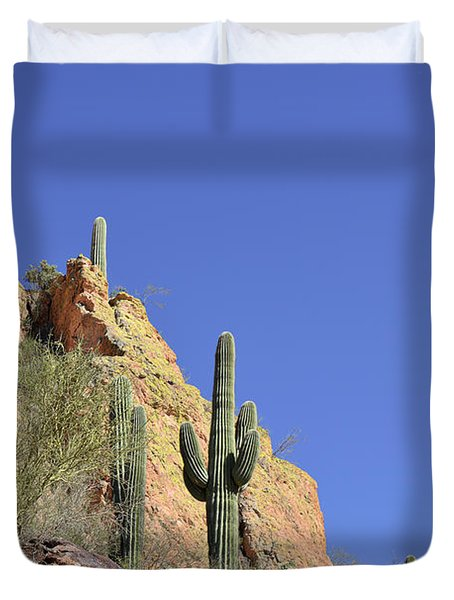 Desert Plants of The Superstitions Duvet Cover by Christine Till