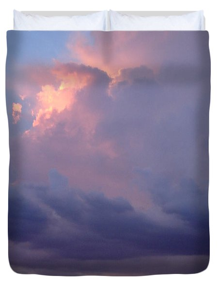 Desert Rainstorm 6 Duvet Cover by Kerri Mortenson