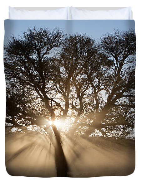 Desert Tree Duvet Cover by Max Waugh