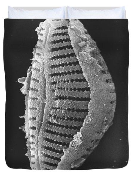 Diatom Duvet Cover by David M. Phillips