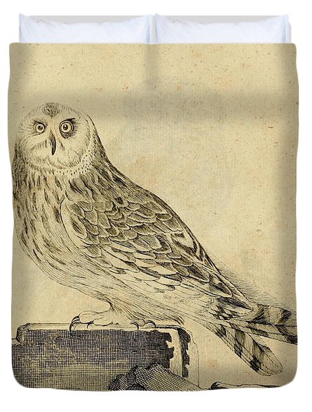 Die Stein Eule Or Church Owl Duvet Cover by Unknown Artist