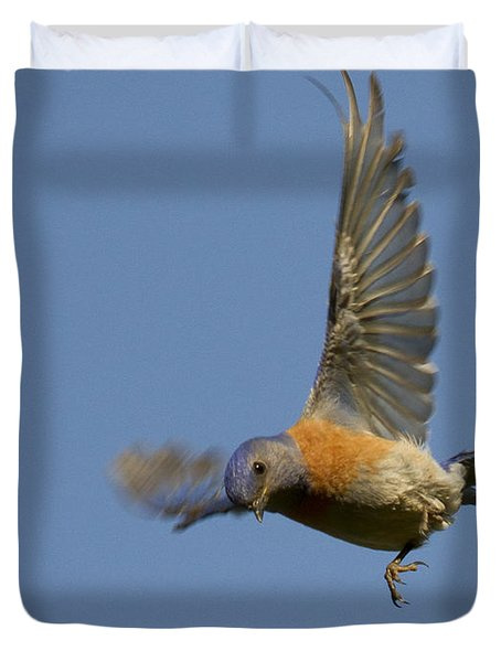 Dive Bomber Duvet Cover by Jean Noren