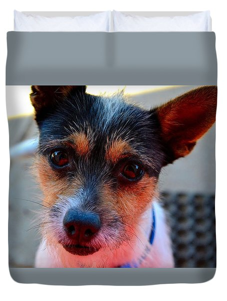 Dog 2   Duvet Cover by Naomi Burgess