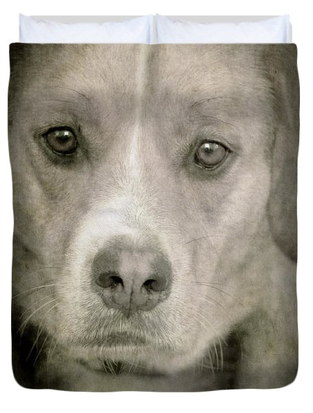 Dog Posing Duvet Cover by Loriental Photography