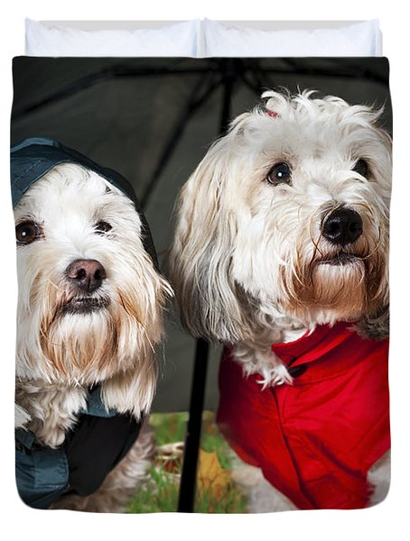 Dogs Under Umbrella Duvet Cover by Elena Elisseeva