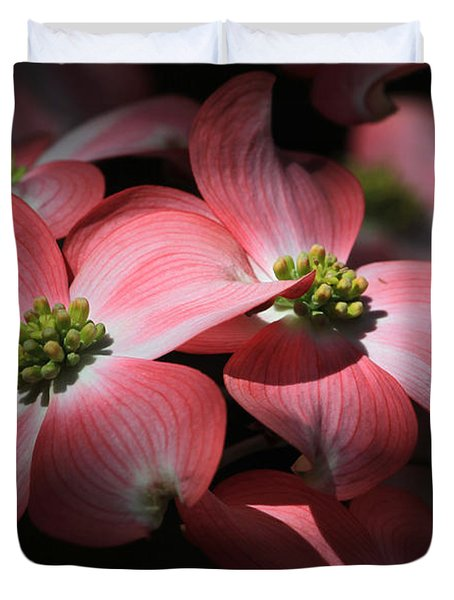 Dogwood Blossoms Duvet Cover by Donna Kennedy