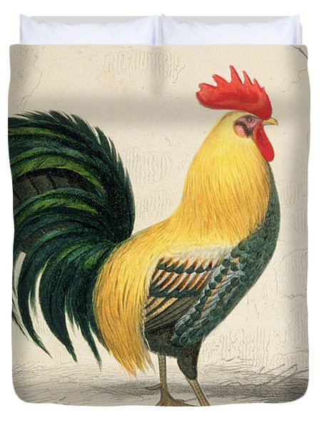 Domestic Cock Duvet Cover by Edouard Travies