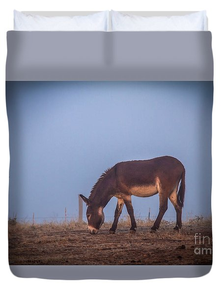 Donkey In The Fog Duvet Cover by Robert Bales