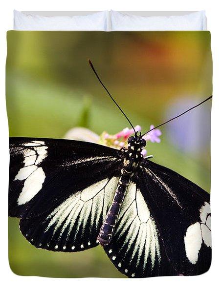 Doris Longwing Butterfly Duvet Cover by Oscar Gutierrez