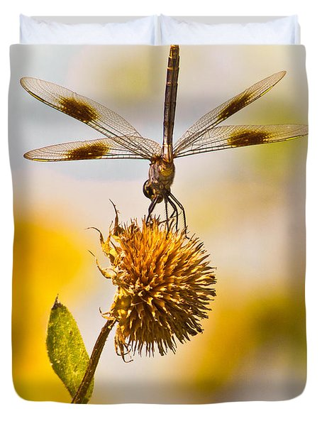 Dragonfly On Dead Bud Duvet Cover by Robert Frederick