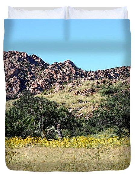 Dragoon Mountains Duvet Cover by Joe Kozlowski
