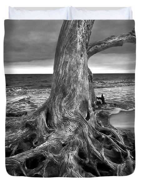 Driftwood On Jekyll Island Black And White Duvet Cover by Debra and Dave Vanderlaan