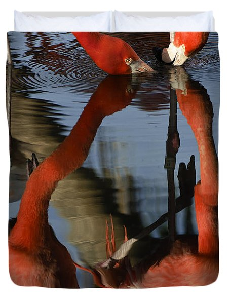 Dual Flamingo Reflections Duvet Cover by Dave Dilli