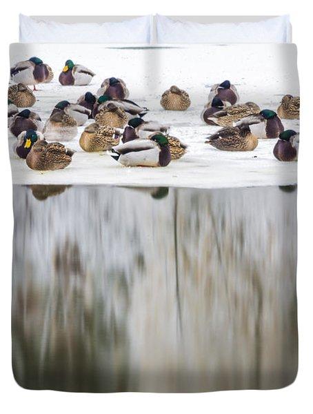 Ducks On The Red Cedar River  Duvet Cover by John McGraw
